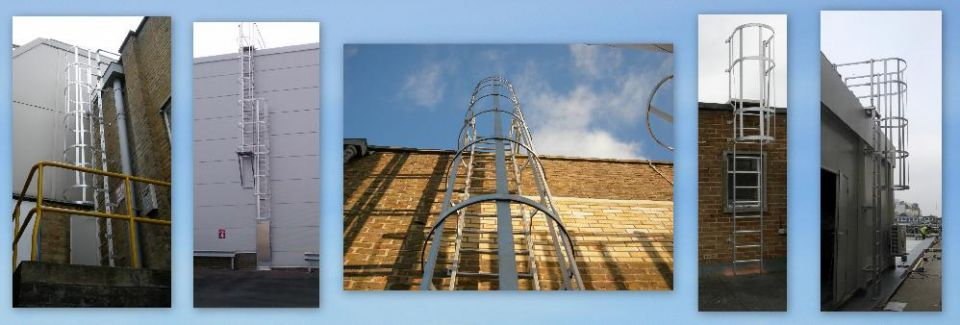 Vertical hooped ladders